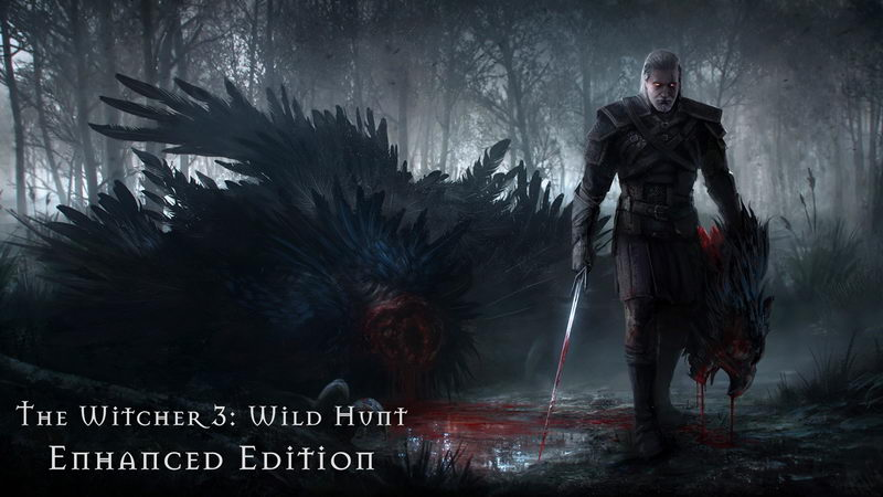 The Witcher 3 Wild Hunt - Enhanced Edition