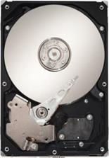 Seagate 1 TB Barracuda (ST1000DM003)